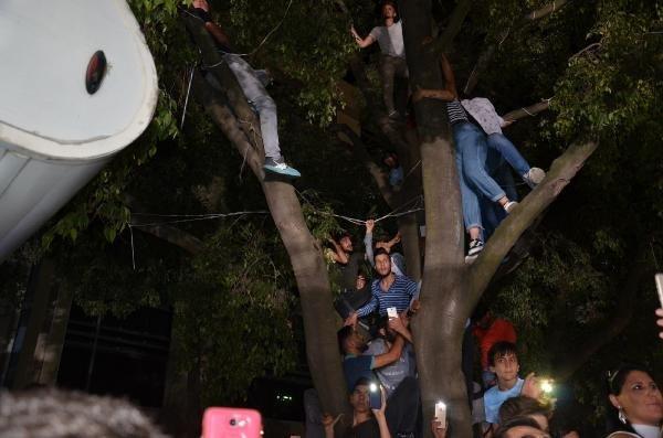 İrem Derici hayranları ağaçlara çıktı