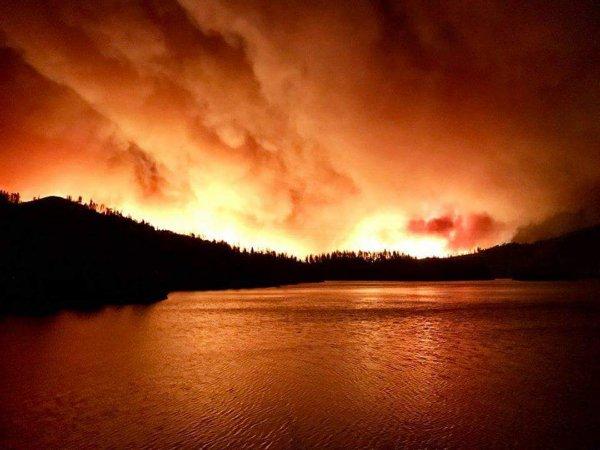 Kaliforniya'daki yangın Ulusal Parkı kapattırdı