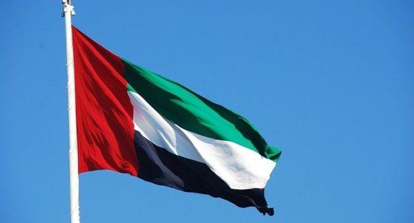 BAE ve Bahreyn, Türkiye'yi kınadı